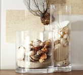 Beach Shell Vase Filler