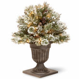 NATIONAL TREE CO National Tree Co. 2 Foot Glittery Bristle Pine Porch Pre-Lit Christmas Tree