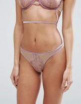 Asos Arielle Trapped Lace Velvet Trim Thong