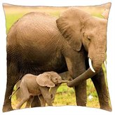 """ISASS Come along - Throw Pillow Cover Case (16"""" x 16"""")"""