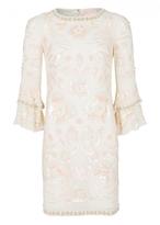 Matthew Williamson Poppy Georgette Shift Dress