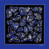 The Tropical Butterfly Pocket Square - Royal Blue