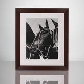 Ralph Lauren Adolfo's Three Horses