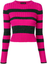 Proenza Schouler Striped Rib Knit Crewneck