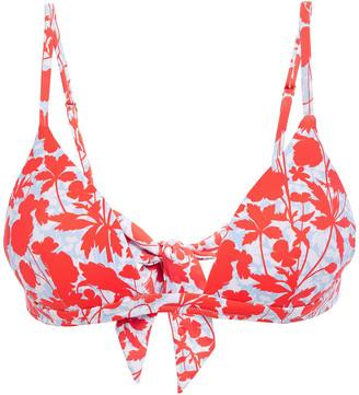 Heidi Klein Floral-print Bikini Top