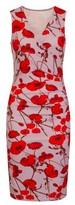 Dorothy Perkins Womens *Girls On Film Multi Coloured Poppy Print Bodycon Dress, Multi Colour