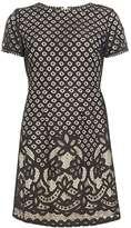 Dorothy Perkins Petite Black Lace A-Line Dress