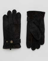 Dents Chester Suede Gloves In Black