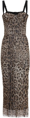 Dolce & Gabbana Leopard Sheer Cotton Tulle Midi Dress