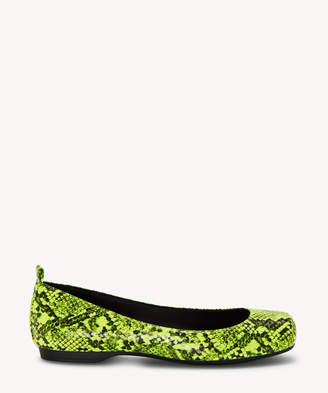 Jessica Simpson Women's Mickella In Color: Neon Yellow Shoes Size 5 FLORIDA GATOR PRINT From Sole Society