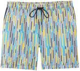 Mr.Swim Dale Dripping Stripe Swim Trunk 8138390