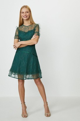 Coast Lace Ruffle Skater Dress