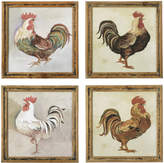 OKA Proud Cockerels Framed Prints, Set of Four
