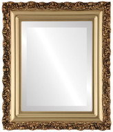"""The Oval And Round Mirror Store Venice Framed Rectangle Mirror in Gold Spray, 29""""x41"""""""