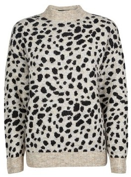 Dorothy Perkins Womens Cheetah Print Jumper