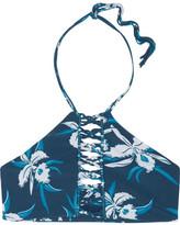 Mikoh West Oz Floral-print Crocheted Halterneck Bikini Top - Mid denim