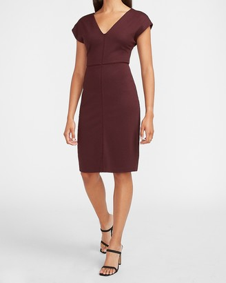 Express Seamed V-Neck Sheath Dress