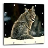 3drose Coyote Wall Clock, 10 by 10-Inch