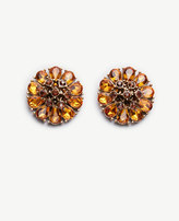 Ann Taylor Crystal Statement Studs