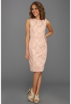 Maggy London Lace Inset Cotton Sateen Sheath (Blush) - Apparel