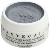 Chantecaille Detox Clay Mask 1.7fl.oz