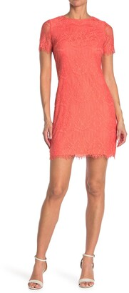 Kensie Scalloped Short Sleeve Lace Dress