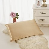 ALASKA BEAR - Natural Silk Pillowcase, Hypoallergenic, 19 momme, 600 thread count 100 percent Mulberry Silk, Queen Size with hidden zipper(Champagne)