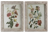Uttermost Mimosa and Baguenaudier 2-Pc. Floral Wall Art