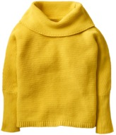 Crazy 8 Turtleneck Sweater