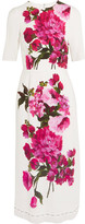 Dolce & Gabbana Floral-print Crepe Dress - White