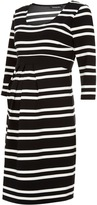 Isabella Oliver Finch Maternity Striped Dress