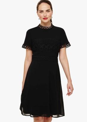Phase Eight Ivanna Lace Bodice Dress