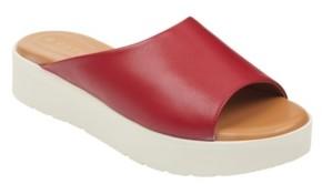 Easy Spirit Women's Evolve Flora Flat Sandal Women's Shoes