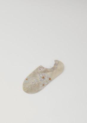 Antipast Marguerite Socks