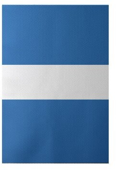e by design Flatweave Azure Rug Rug Size: Rectangle 2' x 3'