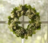 Pottery Barn Live Willow & Hydrangea Wreath