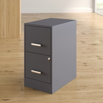Wrought Studio Wooster 2 Drawer Vertical Filing Cabinet Finish: Charcoal