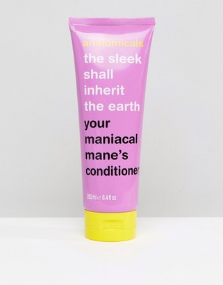 Anatomicals The Sleek Shall Inherit The Earth Conditioner 250ml