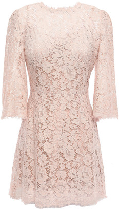 Dolce & Gabbana Flared Cotton-blend Corded Lace Mini Dress