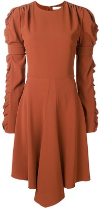 Chloé Ruffled Sleeve Flared Dress