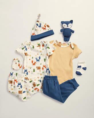 Baby Essentials Sandy & Simon (Newborn Boys) 9-Piece Fox Woodland Hanging Gift Set