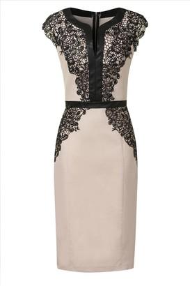 Paper Dolls Cream & Black Cap Sleeve Lace Detail Bodycon Dress