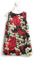 Dolce & Gabbana poppy and daisy print brocade dress