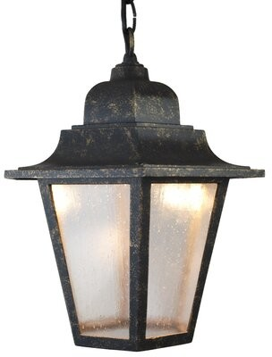 Flannigan 1-Light Outdoor Hanging Lantern Charlton Home Finish: Black, Bulb Type: 100W Standard Base
