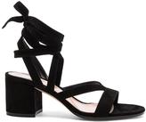 Gianvito Rossi Janis Low-Heel Sandals