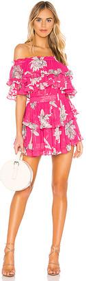 MISA Los Angeles Los Angeles X REVOLVE Isella Dress