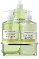 Williams-Sonoma Dish Soap, Hand Soap & Lotion Set, Lemongrass Ginger