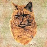 Dickens & Smyth Red Tabby Lap Square 1952-LS by pure country