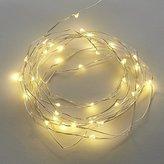 CB2 Wire Sprinkle 21' Line Lights