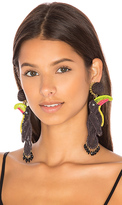 Mercedes Salazar Tucan Earrings in Black.